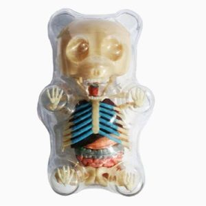 NIB-Jason Freeney Gummi Bear Anatomy Puzzle